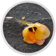 Fallen Flower Round Beach Towel