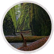 Round Beach Towel featuring the photograph Fallen by Jonathan Davison