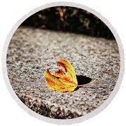 Fallen Round Beach Towel