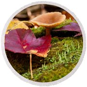Fallen Leaves And Mushrooms Round Beach Towel
