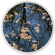Fallen Leaves In Autumn Lake Round Beach Towel