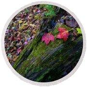 Round Beach Towel featuring the photograph Fallen Leaves On The Limberlost Trail by Lori Coleman