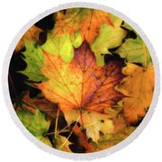 Fallen Maple Leaf Round Beach Towel