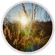Round Beach Towel featuring the photograph Fallen Rays by Nikki McInnes