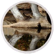 Round Beach Towel featuring the photograph Fallen Tree Mirror Image by Debbie Oppermann