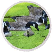 Family Affair Round Beach Towel
