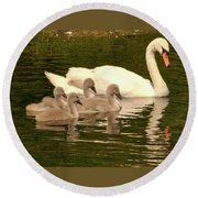 Family Swan  Round Beach Towel