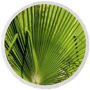 Fan Palm View 2 Round Beach Towel by James Gay