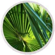 Fan Palm View 3 Round Beach Towel