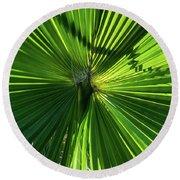 Fan Palm View Round Beach Towel