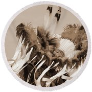 Round Beach Towel featuring the photograph Fancy Dancer In Sepia by Heidi Hermes