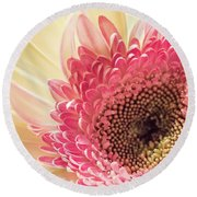Fancy Pants Gerbera Daisy Round Beach Towel