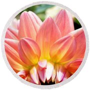 Fanned Out Petals Round Beach Towel