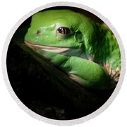 Fantastic Green Frog Round Beach Towel by Jean Noren