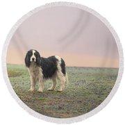 Farm Dog In Fog Round Beach Towel