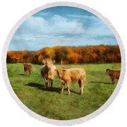 Farm Field And Brown Cows Round Beach Towel