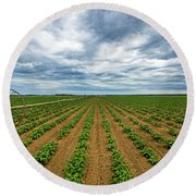 Farmland On The North Fork Round Beach Towel