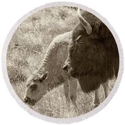 Round Beach Towel featuring the photograph Father And Baby Buffalo by Rebecca Margraf
