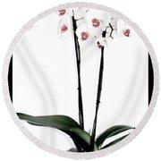 Favorite Gift Of Orchids Round Beach Towel by Marsha Heiken