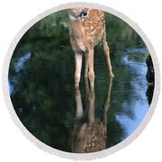 Fawn Reflection Round Beach Towel