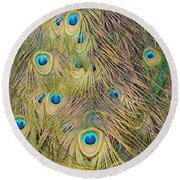Round Beach Towel featuring the photograph Feather Finesse by Margaret Bobb
