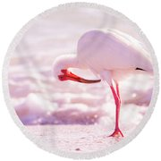 Feather Out Of Place Round Beach Towel