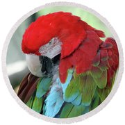 Feathers Round Beach Towel