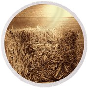 Feed Round Beach Towel by American West Legend By Olivier Le Queinec