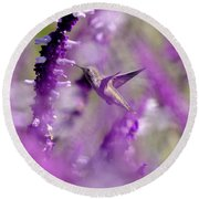 Feeding In The Midst Of Purple 1 Round Beach Towel