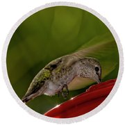 Round Beach Towel featuring the photograph Female Anna's Hummingbird H40 by Mark Myhaver