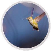 Female Annas Hummingbird Round Beach Towel