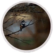 Female Belted Kingfisher 3 Round Beach Towel by Ernie Echols