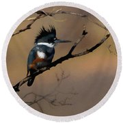 Female Belted Kingfisher Round Beach Towel by Ernie Echols