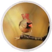 Round Beach Towel featuring the photograph Female Cardinal Excited For Spring by Darren Fisher