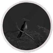 Female Grackle Round Beach Towel