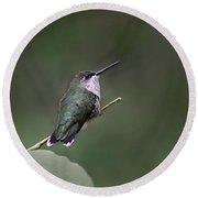 Hummingbird Round Beach Towel by William Tanneberger