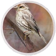Female Sparrow On Branch Ginkelmier Inspired Round Beach Towel