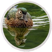 Round Beach Towel featuring the photograph Female Wood Duck by Jean Noren