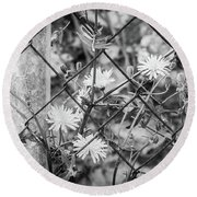 Round Beach Towel featuring the photograph Fence And Flowers. by Gary Gillette