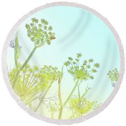 Round Beach Towel featuring the photograph Fennel As High As An Elephant's Eye by Cindy Garber Iverson