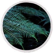 Patterns Of Nature 6 Round Beach Towel
