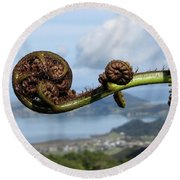 Fern Fiddlehead Round Beach Towel