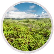 Round Beach Towel featuring the photograph Ferns For Days by T Brian Jones