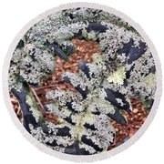 Ferns Round Beach Towel
