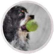 Round Beach Towel featuring the photograph Fetching Cocker Spaniel  by Benanne Stiens