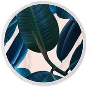 Ficus Elastica 2 Round Beach Towel by Mark Ashkenazi