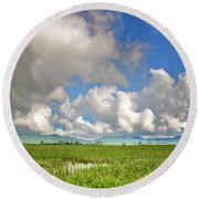 Round Beach Towel featuring the photograph Field by Charuhas Images