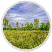 Round Beach Towel featuring the photograph Field Gaeddeholm. by Leif Sohlman