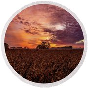 Field Of Beans Round Beach Towel by John Harding