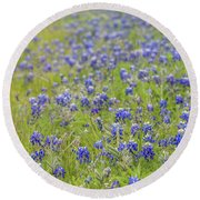 Field Of Blue Bonnet Flowers Round Beach Towel